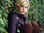 Allison Mack (#31583) desktop wallpaper - 1024x768