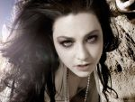 Amy Lee (#40541) desktop wallpaper - 1024x768