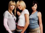 Atomic Kitten (#16429) desktop wallpaper - 1024x768