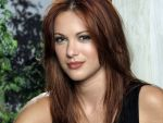 Danneel Harris (#31649) desktop wallpaper - 1600x1200