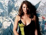 Elizabeth Hurley (#32819) desktop wallpaper - 1024x768