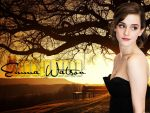 Emma Watson (#41463) desktop wallpaper - 1024x768