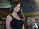 Erica Durance (#34543) desktop wallpaper - 1024x768