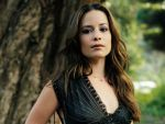 Holly Marie Combs (#27352) desktop wallpaper - 1024x768