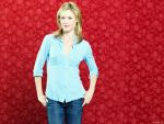 Julie Bowen (#40119) desktop wallpaper - 1152x864