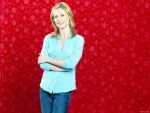 Julie Bowen (#40120) desktop wallpaper - 1152x864