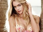 Lindsay Ellingson (#41161) desktop wallpaper - 1024x768