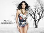 Nicole Scherzinger (#40188) desktop wallpaper - 1024x768