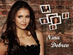 Nina Dobrev (#40931) desktop wallpaper - 1024x768