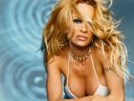Pamela Anderson (#29331) desktop wallpaper - 1024x768