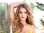 Rosie Huntington-Whiteley (#40170) desktop wallpaper - 1024x768
