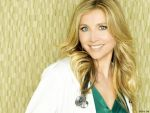 Sarah Chalke (#33419) desktop wallpaper - 1024x768
