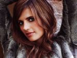 Stana Katic (#41394) desktop wallpaper - 1024x768
