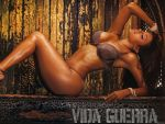 Vida Guerra (#37129) desktop wallpaper - 1024x768